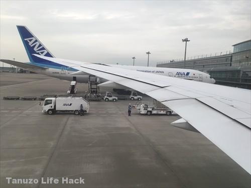 ANA787-8 30A翼の横