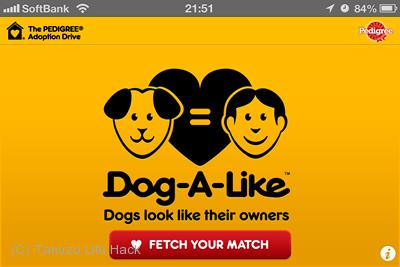 自分に似た顔の犬が見つかる「DOG-A-LIKE」の使い方