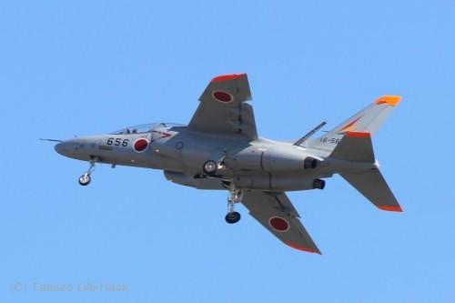 2014入間基地航空祭:T-4