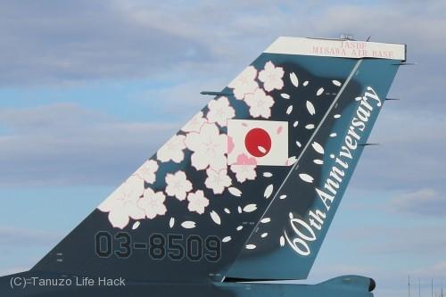 2014入間基地航空祭:F-2 60周年記念塗装 尾翼