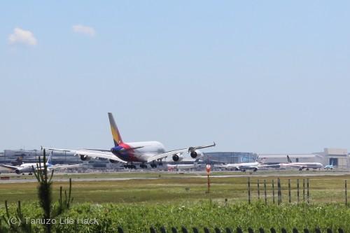 asiana-A380-NRT_0004c
