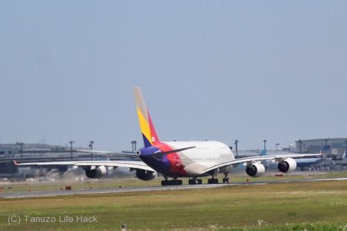 アシアナ航空A380-成田