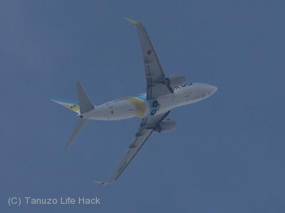AIRDO : B737-8