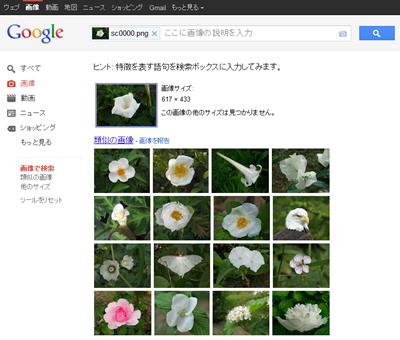 Googleで手元の写真で画像検索する方法:類似した画像が検索結果に表示されます。