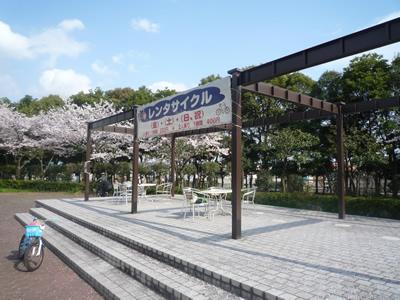 埼玉県立健康福祉村で花見:レンタルサイクリングがあります。