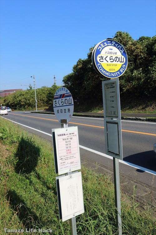 sakuranoyama_narita_toho_036