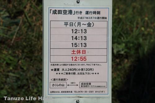 sakuranoyama_narita_toho_037