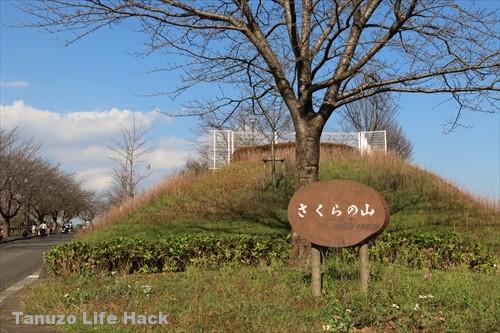 sakuranoyama_narita_toho_038